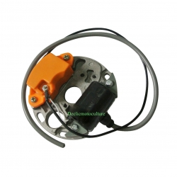 Allumage electronique complet STIHL 070 / 090